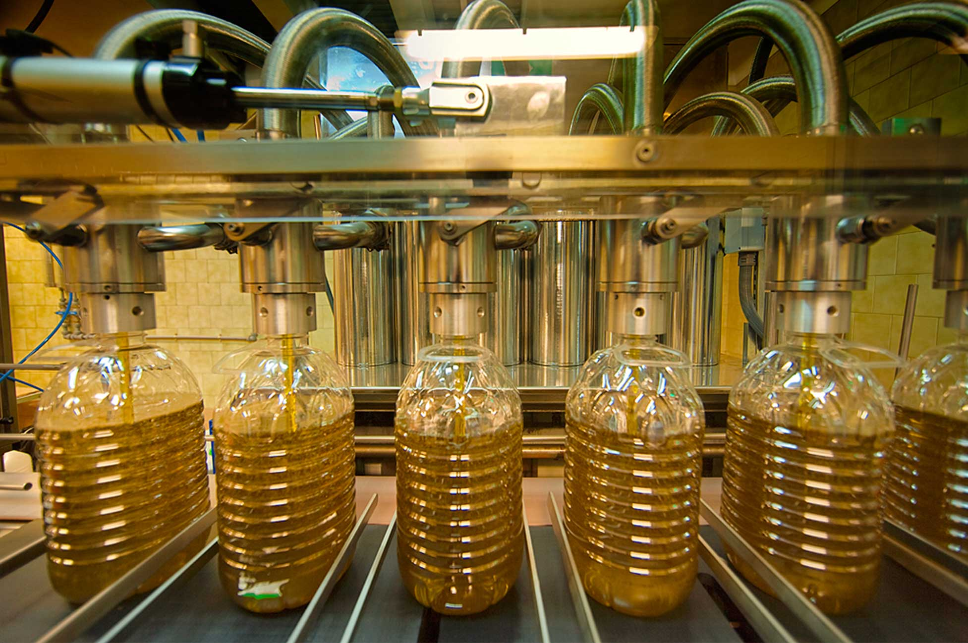 Les cooperatives de producció d'oli